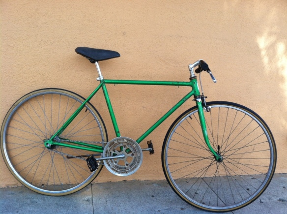 Single Speed Schwinn Thrasher Model